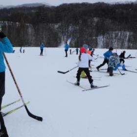 Animation ski hockey