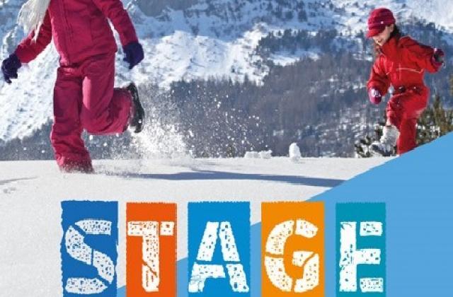 Stages cocktail des neiges